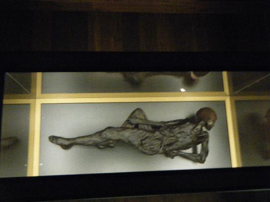 Moesgaard Museum: Bog Man!