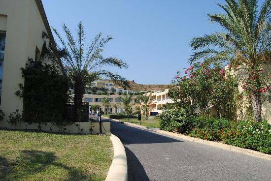Kipriotis Maris: ingresso retro