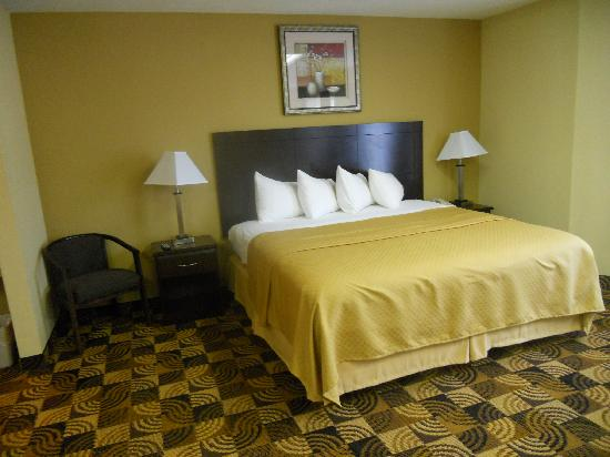 Quality Inn Brunswick Cleveland South: Comfy King Bed!