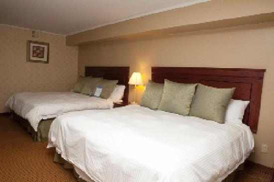Quality Inn & Suites: Deluxe Guestroom