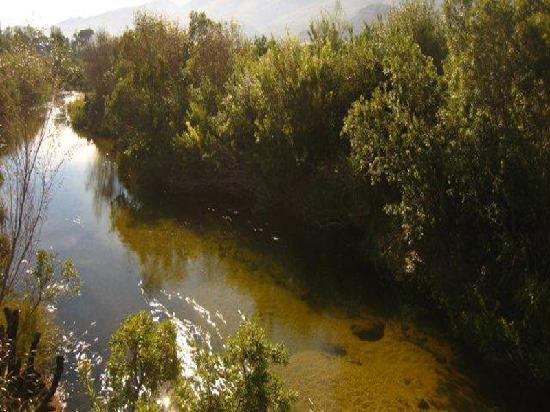 Die Vlei Citrusdal: river