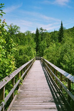 Penetanguishene, Canada: Awenda Provincial Park, Beaver Pond Trail