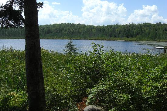 Mountain Lake Campground and RV Park: View from our campsite