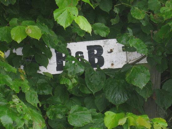 Murrayfield B&B: The sign, a bit hidden