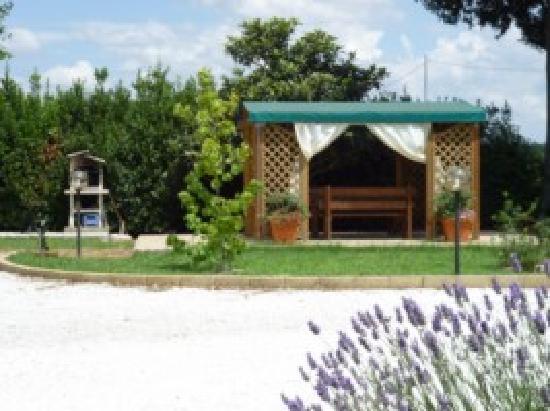 B&B Podere Oslavia : giardino con gazebo e barbecue
