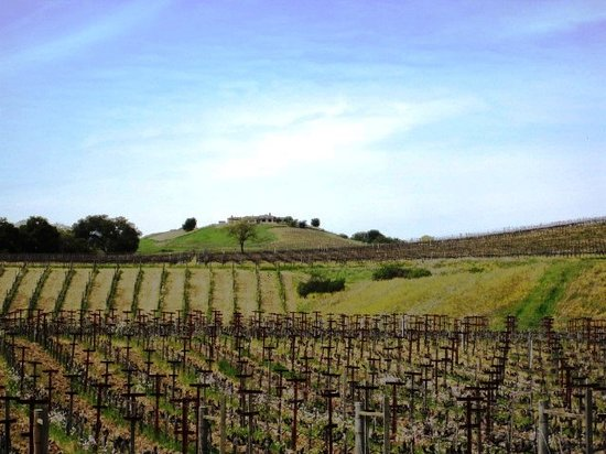 Hendry Ranch Wines