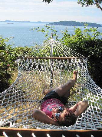 Ship House Bed and Breakfast: Hammock View