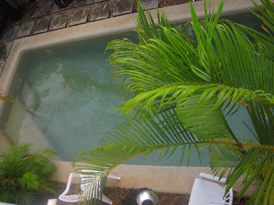 The Villas Palm Cove: Villa private pool