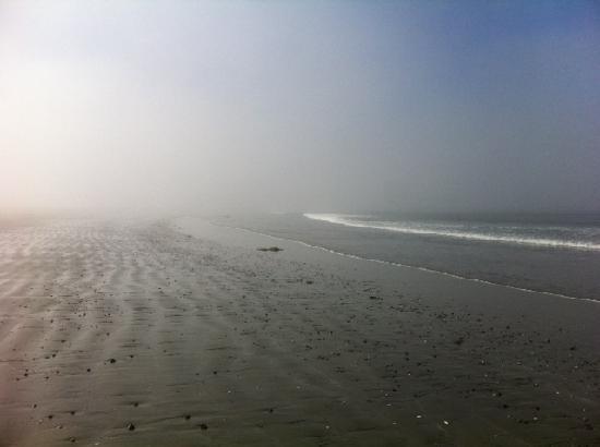 Harvey House B&B: Chesterman Beach - Early morning fog
