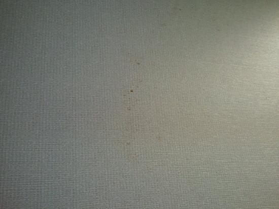 Crowne Plaza Springfield: Stain on the wall in our first room