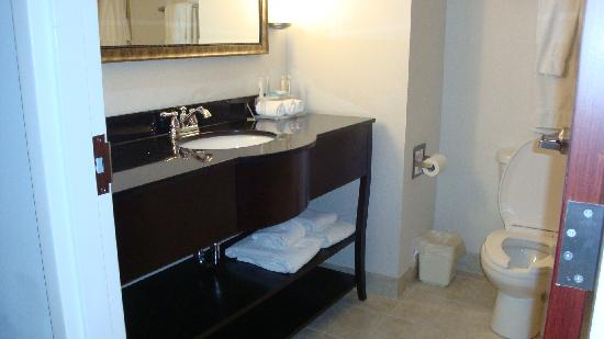 Holiday Inn Express Bentleyville: Bathroom vanity