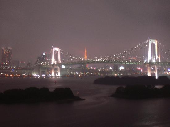 โรงแรมนิกโกะ โตเกียว: 残念だった夜景