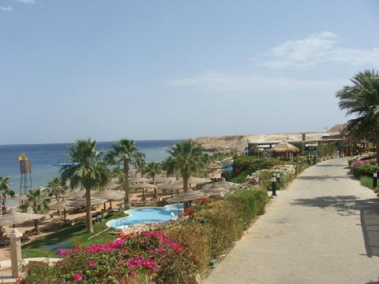 The Royal Savoy Sharm El Sheikh: Beach