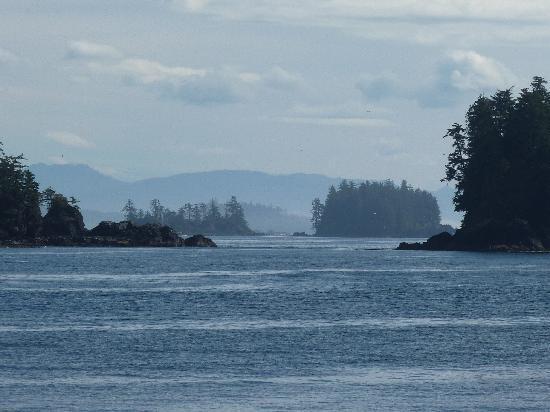 Lady Rose Marine Services: Edge of the island
