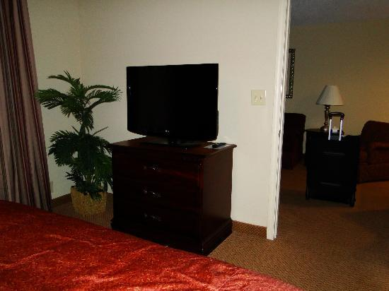 Homewood Suites by Hilton Huntsville-Village of Providence: Tv in bedroom
