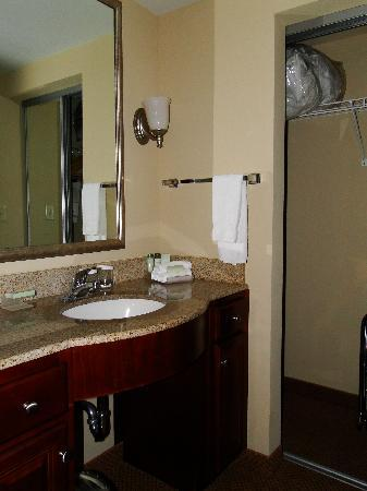 Homewood Suites by Hilton Huntsville-Village of Providence: Bathroom vanity
