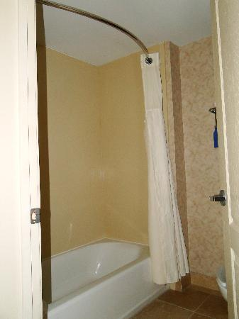 Homewood Suites by Hilton Huntsville-Village of Providence: Shower/ tub