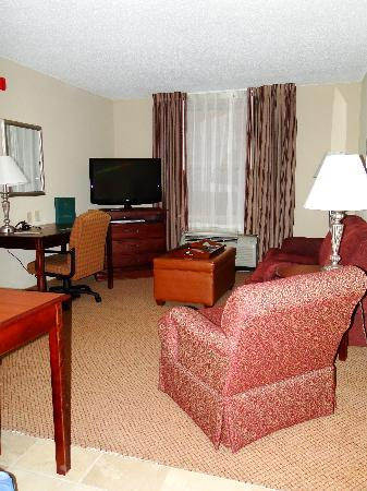 Homewood Suites by Hilton Huntsville-Village of Providence: Living room