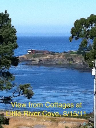 Cottages at Little River Cove: Ocean view
