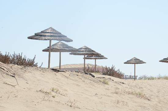 Marina di Butera, Włochy: ombrelloni sulle dune