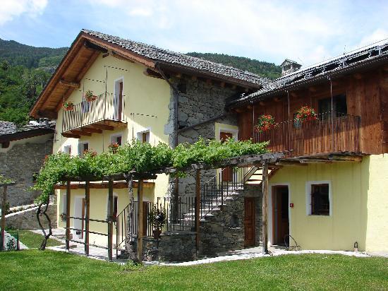 Grand Saint Bernard : il verde