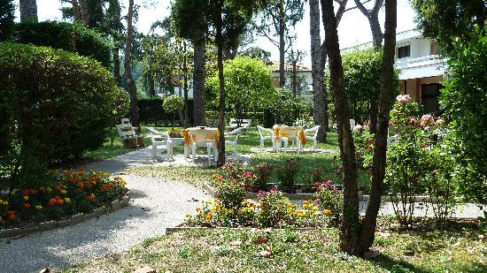 Hotel Terme Marconi: Il giardino