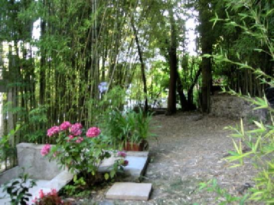 Katuric Apartments : Amazing Hidden Garden