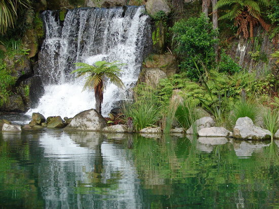The Rainbow Spring Picture Of Rainbow Springs Nature