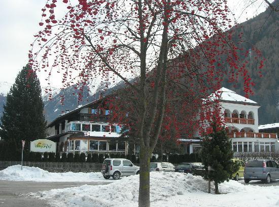 Hotel Wiesnerhof : Vista dalla strada