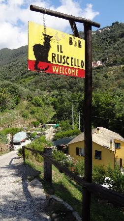 B&B Il Ruscello: Il Ruscello