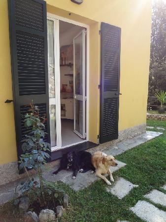 B&B Il Ruscello: Luna and Stella