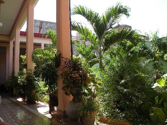 Hostal Autentica Pergola: Garden