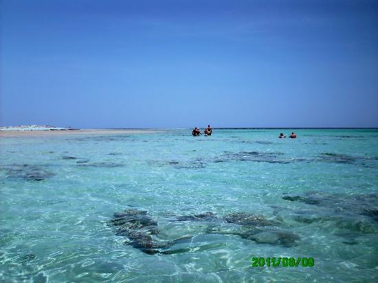 Gorgonia Beach Resort: piscina naturale nel reef nord