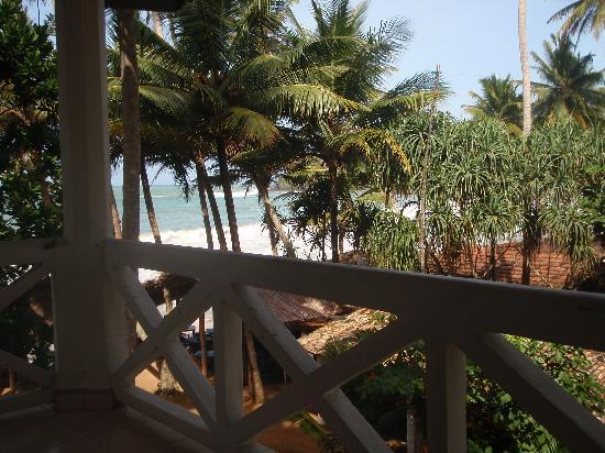 Mirissa Beach Inn: Balcony view