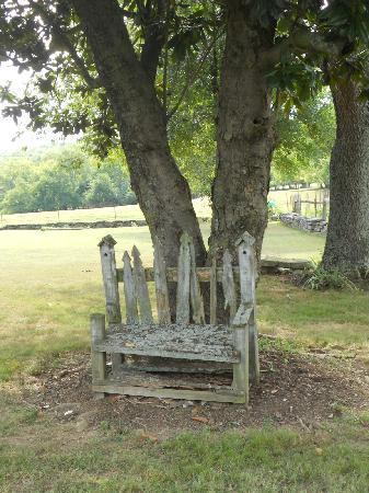 The Old Dr Cox Farm Bed & Breakfast: Rustic touches everywhere