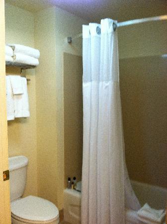 Homewood Suites by Hilton Eatontown : bathroom, great pressure in shower