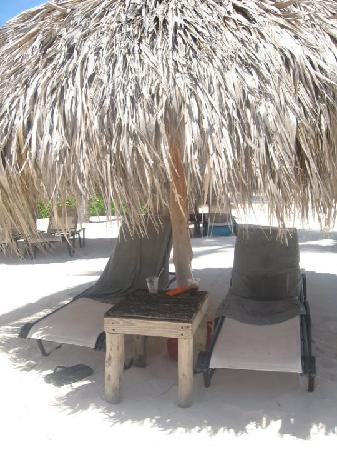 Secrets Royal Beach Punta Cana: Transats sur la plage