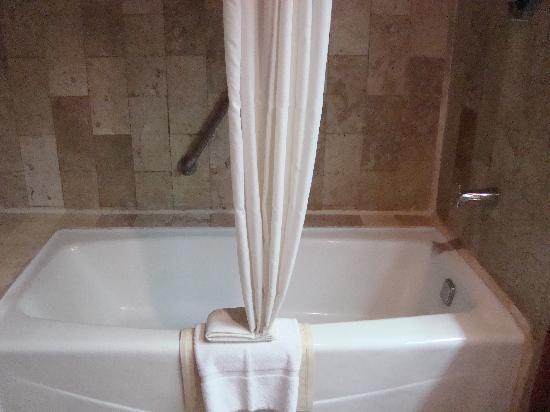 Grand Hotel Tijuana: Tub