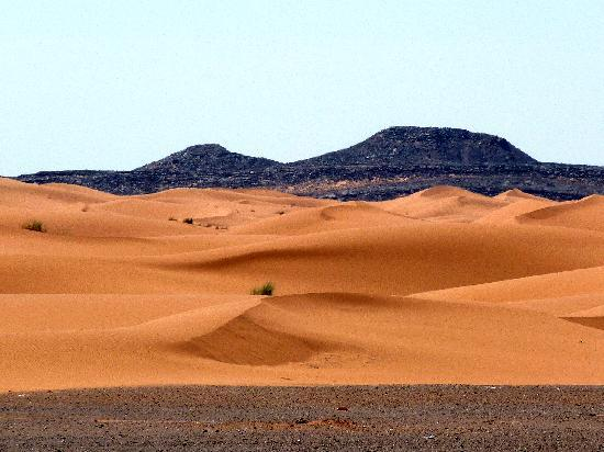 Gite Dans La Palmeraie: L'erg cherbbi à Merzouga