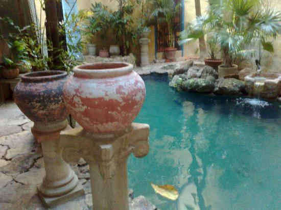 Casa Mexilio Guest House: Cenote-like pool