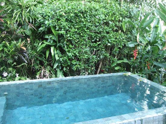 Maya Ubud Resort & Spa: La piscine de la villa