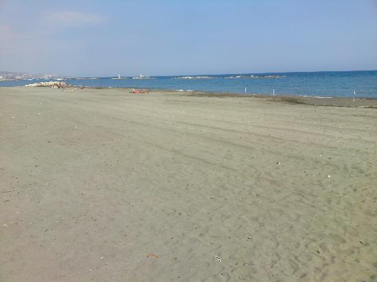 Navarria Hotel: beach