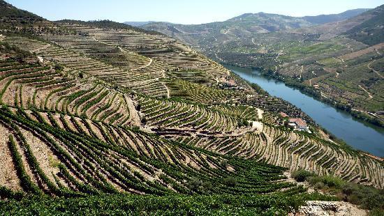Douro Valley : amazing view from the QUINTA DA ROMANEIRA
