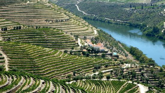 Douro Valley : the beautiful QUINTA DA ROMANEIRA hotel: VELHA house