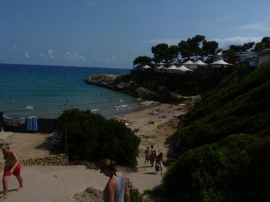 Torre De La Mora : La petite plage, plage exclusive au camping..