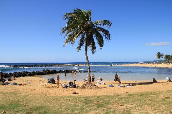 Grand Hyatt Kauai Resort Spa Nearby Poipu Beach County Park A Must