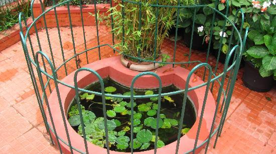 Vindhyas Homestay: Small artificial pond