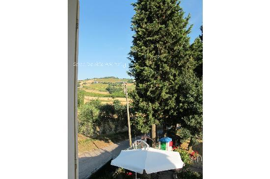 Tavullia, Italia: the view from the room