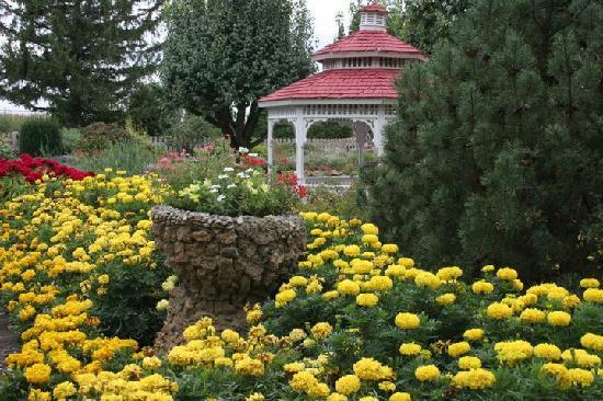 Rockome Gardens: The Gardens are in bloom!