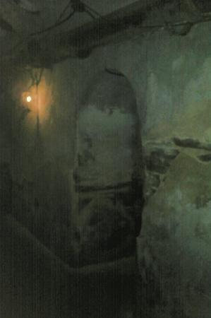 Old Jail Museum: dungeon